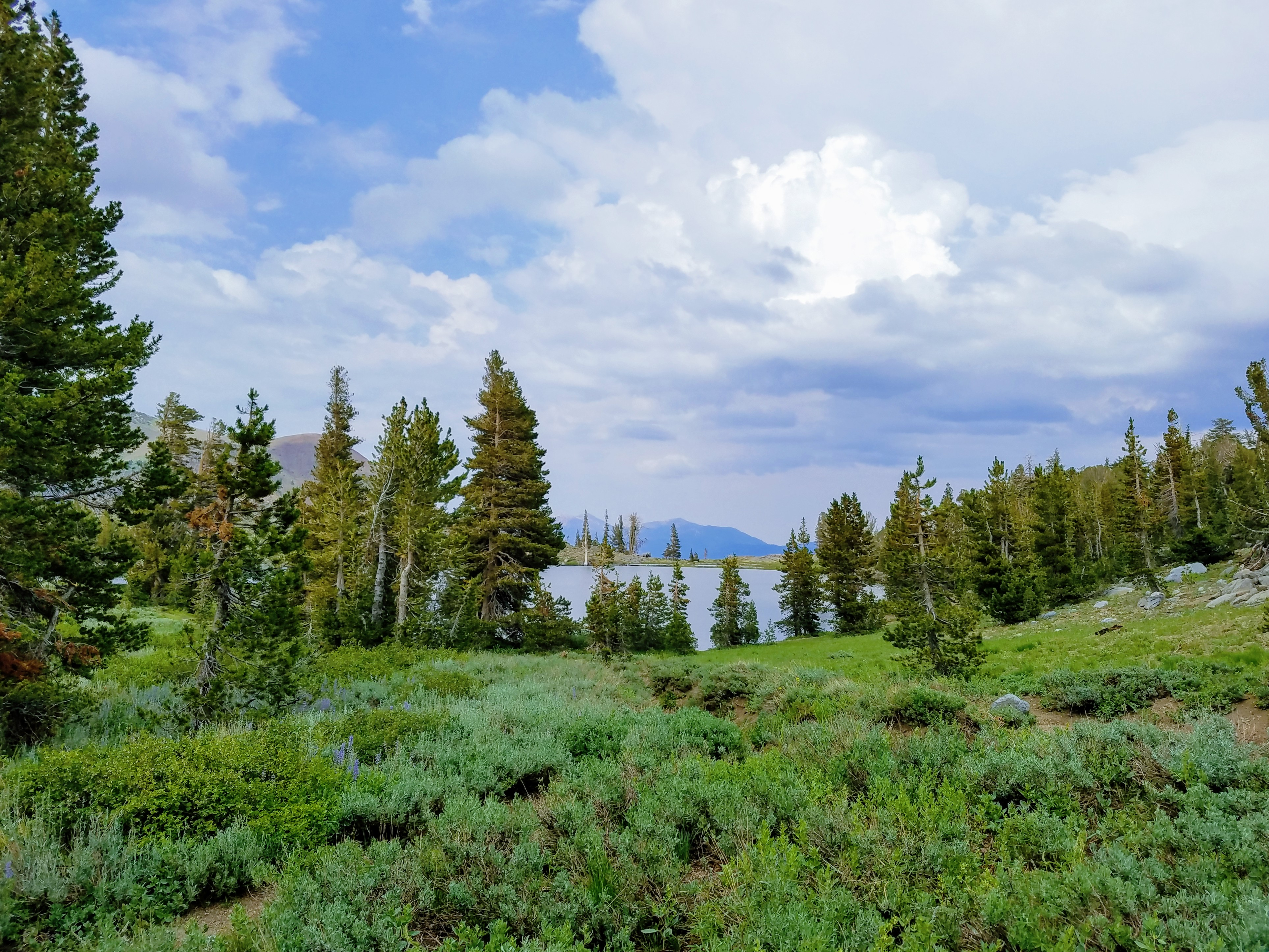 winnemucca lake hike