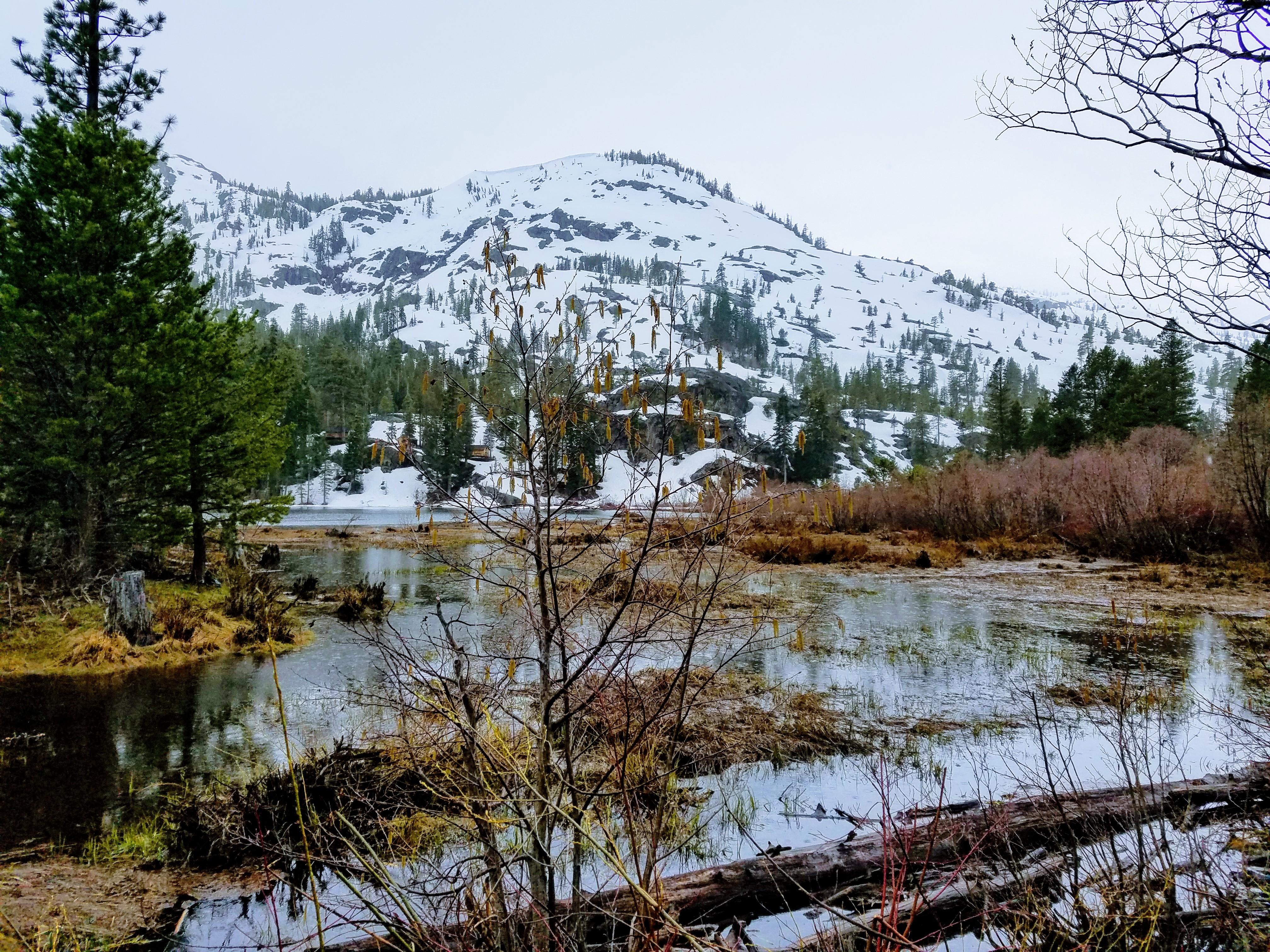 Lily Lake Tahoe